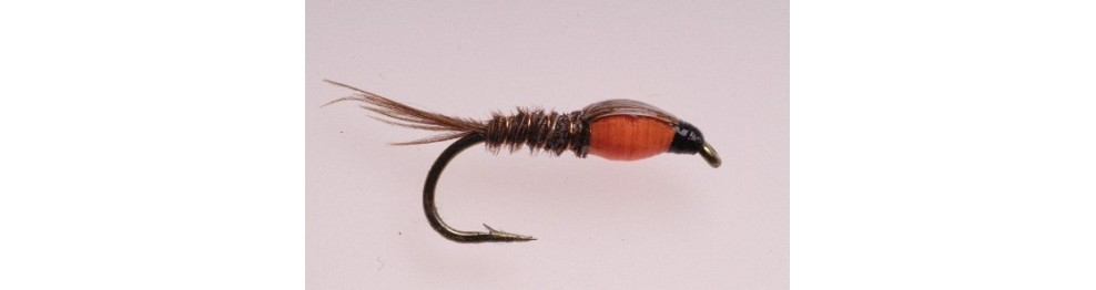 AB FLY Nymphes